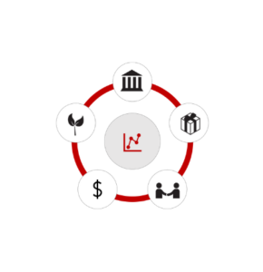 SABI: modello di valutazione per le imprese